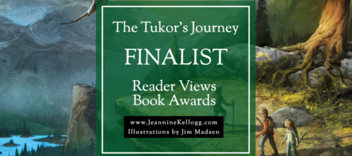 Book Award Finalist!